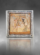 Picture of a Roman mosaics design depicting a Satyr persuing Bacchante, from the ancient Roman city of Thysdrus. End of 2nd century AD, House in Jiliani Guirat area. El Djem Archaeological Museum, El Djem, Tunisia. Against a grey background .<br /> <br /> If you prefer to buy from our ALAMY PHOTO LIBRARY Collection visit : https://www.alamy.com/portfolio/paul-williams-funkystock/roman-mosaic.html . Type - El Djem - into the LOWER SEARCH WITHIN GALLERY box. Refine search by adding background colour, place, museum etc<br /> <br /> Visit our ROMAN MOSAIC PHOTO COLLECTIONS for more photos to download as wall art prints https://funkystock.photoshelter.com/gallery-collection/Roman-Mosaics-Art-Pictures-Images/C0000LcfNel7FpLI