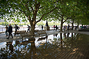 London; English; England; Britain; British; UK; United; Kingdom; South; Bank; Southbank; culture; cultural; arts; area; people; walking; rain; shower; riverside; walkway; weather; water; reflection; reflecting; trees; tree; canopy; covered