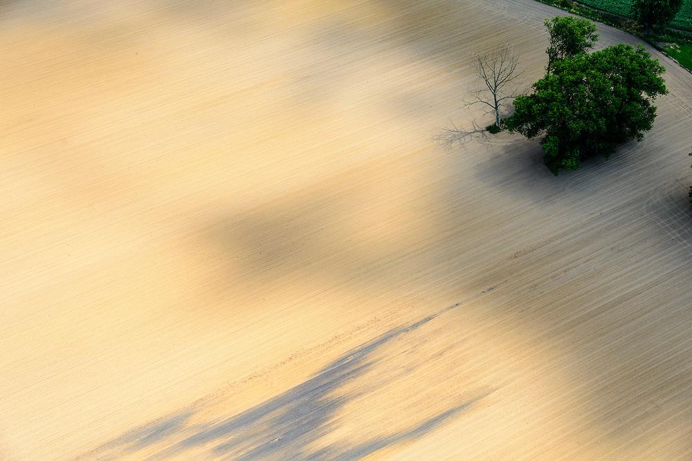 Nederland, Limburg, Gemeente Sittard-Geleen, 26-06-2014; Grevenbicht, zanderige akker met struik en kale boom.<br /> Sandy field with bare tree and shrub.<br /> luchtfoto (toeslag op standaard tarieven);<br /> aerial photo (additional fee required);<br /> copyright foto/photo Siebe Swart.