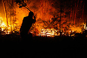 Portugal- Fires in Pedrogao Grande