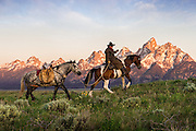 As sunlight first hits the Teton mountain range in Jackson Hole, a wrangler and his horses travel across the sage flats.