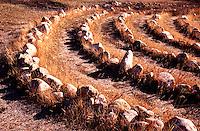 Stone labyrinth walk located at St. Michael's Retreat, Lumsden in the Qu'Appelle Valley, Saskatchewan
