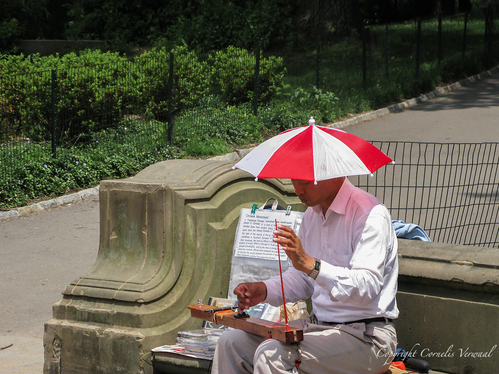 Street musician playing the Chinese Monochord (duxian paoqin) at Bethesda Terrace in Central Park, New York City.