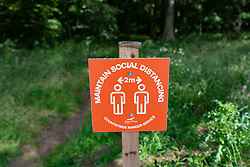 Gullane, Scotland, UK. 9 July, 2020. Signs and one-way system on beach paths have been introduced at beaches in East Lothian. To maintain social distancing some paths are one-way only. Pictured; Paths leading to and from Yellowcraig beach are now one-way only. Iain Masterton/Alamy Live News