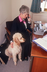 Woman with visual impairment sitting at desk in front of Braille typewriter stroking guide dog and talking on telephone,