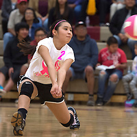 Rehoboth Lynx Faith Vandever (2) reaches to set the ball in the home game against Tohatchi Tuesday.
