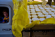 Itamonte_MG, Brazil.<br /> <br /> Na foto, Ronaldo Diniz, produtor de Queijo Parmesao em Itamonte, Minas Gerais.<br /> <br /> In this photo Ronaldo Diniz, He is cheese producer in Itamonte, Minas Gerais.<br /> <br /> Foto: LEO DRUMOND / NITRO