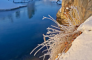 Grasses and rock by a river in winter<br />Whitefish Falls<br />Ontario<br />Canada