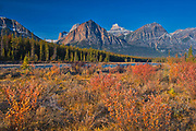 Autumn in The Canadian Rocky Mountains. Icefields Parkway.<br />Jasper National Park<br />Alberta<br />Canada