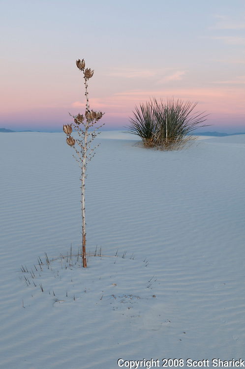 In this picture of New Mexico you can see the beautiful colors washing across the sand dunes at White Sands National Monument.