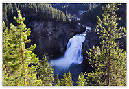 The Upper Falls of the Yellowstone River at the top of the Grand Canyon of the Yellowstone, Yellowstone National Park, Wyoming, USA