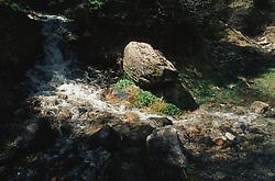 Stream running through Aigues Tortes National park; Pyrenees,