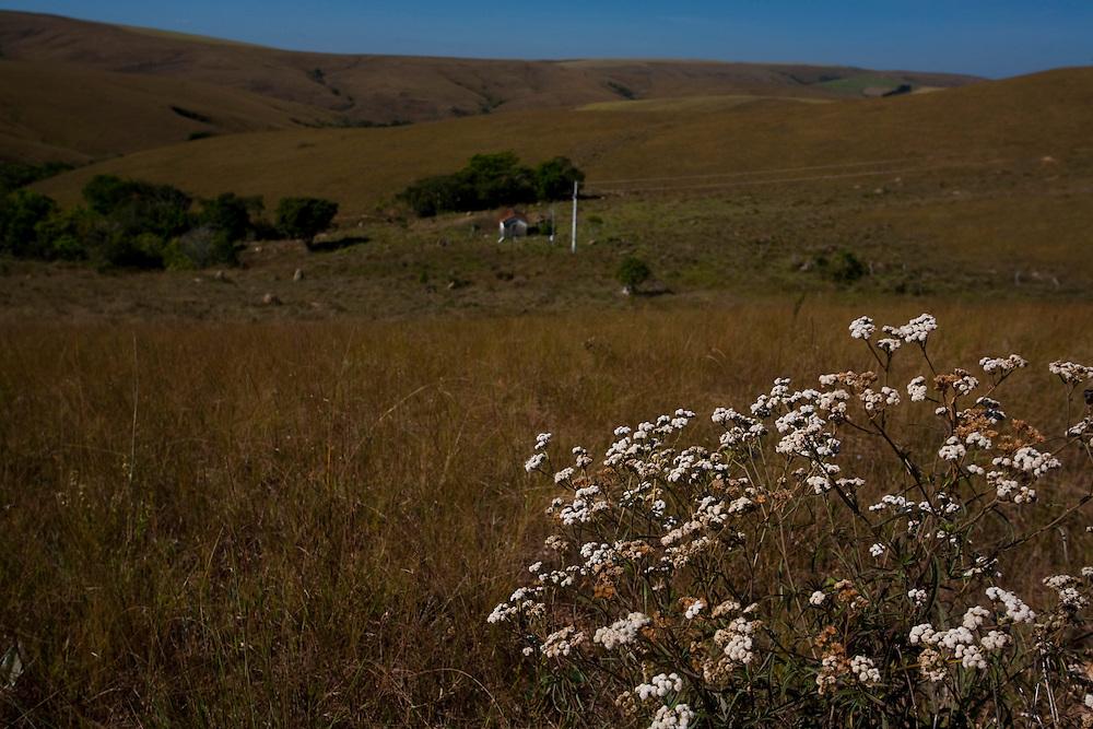 Tapira_MG, Brasil...Parque Nacional Serra da Canastra em Tapira, Minas Gerais...The Serra da Canastra National Park in Tapira, Minas Gerais...Foto: LEO DRUMOND / NITRO