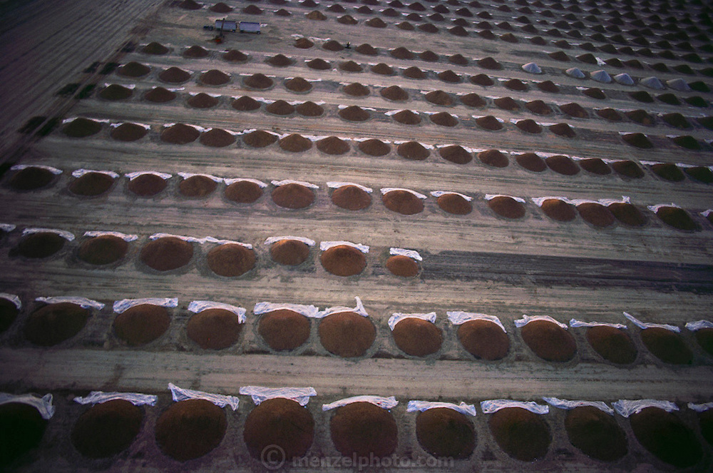 An aerial photograph of mounds of harvested almonds drying in the sun. They're dried for a few days before they are ready for packaging and shipping. Kern County, California. USA.