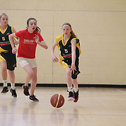 Firhouse Notre Dame basketball