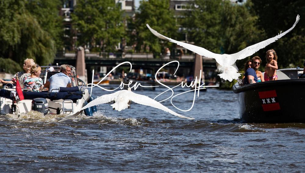 AMSTERDAM - Boten varen in Amsterdam. Zwanen stijgen op.  ANP COPYRIGHT KOEN SUYK