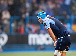 Olly Robinson of Cardiff Blues<br /> <br /> Photographer Simon King/Replay Images<br /> <br /> Guinness PRO14 Round 2 - Cardiff Blues v Edinburgh - Saturday 5th October 2019 -Cardiff Arms Park - Cardiff<br /> <br /> World Copyright © Replay Images . All rights reserved. info@replayimages.co.uk - http://replayimages.co.uk