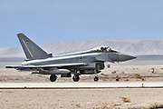 """German Air Force, Eurofighter Typhoon EF2000 a twin-engine, canard-delta wing, multirole fighter. Photographed at the  """"Blue-Flag"""" 2017, an international aerial training exercise hosted by the Israeli Air Force (IAF) at Ouvda airfield, Israel. November 2017"""