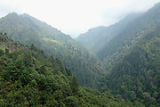 The forested slopes of the mountains near to the Brokpa village of Thagthi, Eastern Bhutan. Though the government policy is to maintain at least 60% of the land as forest, the present ratio is higher, with more than 70% of the country covered in forests of conifers and mixed broadleaf species.