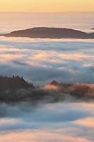 Fog over Olympic Mountains at sunrise Washington