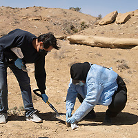 Harrison Cayatineto, lab technician at Navajo Technical University, left, and Navajo Technical University biology student Jerilynn Charley collect soil samples at the West Mesa site in Crownpoint Thursday, April 15. The students visited several uranium sites around Crownpoint to collect soil.