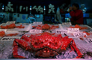 A giant crab is on sale at Kanazawa Omicho fish market for 20.000 Yen (~200 $)