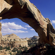 Eroded sandstone arches in Capitol Reef National Park, Utah