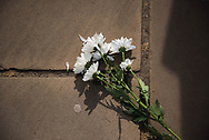 A lone set of flowers lays on the grounds in the shadows of Buckingham Palace In memory of Prince Philip The Royal Highness the Duke of Edinburgh, London on 9 April 2021.
