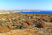 Coastal scenery vegetation blue sea looking south from Res il-Qammieh, Marfa Peninsula, Republic of Malta
