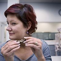 Nederland, Leiden, 31 oktober 2016.<br /> Onderzoek naar vondst Merovingisch grafveld in Echt.<br /> Een deel van de vondst wordt onderzocht in het lab in Leiden.<br /> Op de foto: Onderzoekster Barbara Veselka toont een stukje kaak met wortel Merovingisch grafveld op de plek waar het gezeten moet hebben.<br /> <br /> Foto: Jean-Pierre Jans