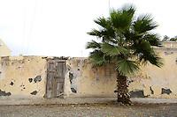 10 JAN 2006, SAO FELIPE/FOGO/CAPE VERDE:<br /> Mauer mit alter Tuere und Palme, Sao Felipe, Insel Fogo, Kapverdische Inseln<br /> Wall with old door and palm, island Fogo, Cape verde islands<br /> IMAGE: 20060110-01-022<br /> KEYWORDS: Travel, Reise, Dritte Welt, Third World, Kapverden