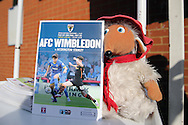 a Stuffed Womble toy holds the official match day programme outside The Cherry Red Records Stadium before k/o. Skybet football league two play off semi final, 1st leg match, AFC Wimbledon v Accrington Stanley at the Cherry Red Records Stadium in Kingston upon Thames, Surrey on Saturday 14th May 2016.<br /> pic by John Patrick Fletcher, Andrew Orchard sports photography.