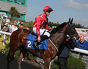 Jockey George Downing on British Embassy in the Parade Ring before the 4.20 race at Brighton Racecourse, Brighton & Hove, United Kingdom on 10 June 2015. Photo by Bennett Dean.
