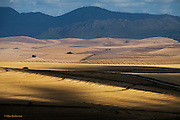 Vast plains of lush looking crops stretch right across the enormous valleys, from mountain ridge to mountain ridge.  The roads are long and near deserted and houses and hamlets are few and far between. A VERY impressive landscape.
