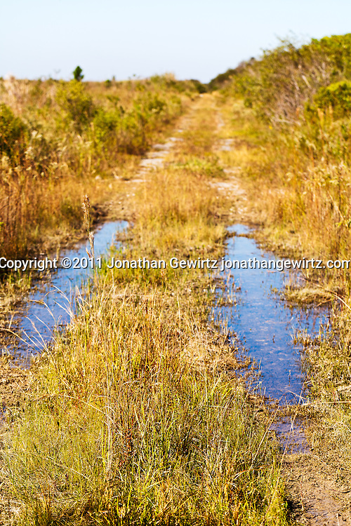 An abandoned road intersecting Old Ingraham Highway in the Florida Everglades. WATERMARKS WILL NOT APPEAR ON PRINTS OR LICENSED IMAGES.