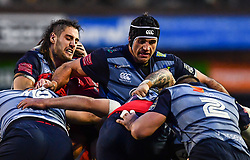 Cardiff Blues' George Earle controls the forwards drive - Mandatory by-line: Craig Thomas/Replay images - 31/12/2017 - RUGBY - Cardiff Arms Park - Cardiff , Wales - Blues v Scarlets - Guinness Pro 14