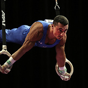 Brandon Wynn, Columbus, Ohio, in action on the <br /> Still rings during the Senior Men Competition at The 2013 P&G Gymnastics Championships, USA Gymnastics' National Championships at the XL, Centre, Hartford, Connecticut, USA. 16th August 2013. Photo Tim Clayton