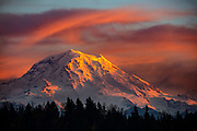 The summit of Mount Rainier, surrounded by storm clouds, turns red as the sun sets in this view from Bonney Lake, Washington. Mount Rainier, which has a summit of 14,411 feet (4,392 meters), is the highest mountain in Washington state and largest volcano in the Cascade Range.