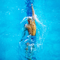 Quah Zheng Wen of Anglo-Chinese School (Independent) swims the final leg of the boys' National 'A' Division 200m backstroke final during the 55th National Schools Swimming Championships at the Singapore Sports School on April 22, 2014, in Singapore.