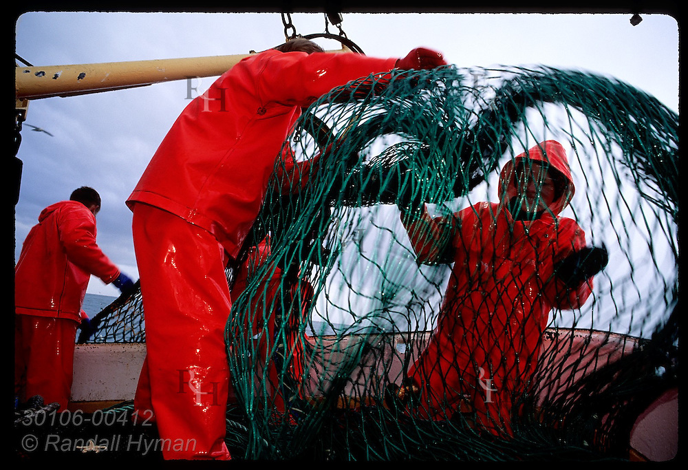 Fishermen stow gillnet in pile on stern deck of fishing boat on a July day in Faxafloi Bay. Iceland