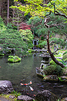 Jizo-ji Temple Pond Garden - Jizo-ji Temple belongs to the Soto Zen sect of Buddhism. There is garden of kaiyu shiki teien style of the early Edo period.  Here, the backdrop and borrowed scenery have been used skillfully. Its unique Y shaped waterfall, is an unusual addition.  There is an stone bridge the crosses over the pond, festooned with iris in season while tiny islands appear to be afloat within the pond.  The garden at Jizo-ji Temple is almost hidden and takes some effort to find it behind the main hall.  Seeking it out is well worth the effort.