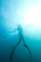 Young woman snorkeling in the Galapagos Islands, Ecuador.