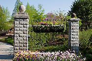 65021-03515 Display garden and hanging basket in spring, Missouri Botanical Gardens  St Louis, MO