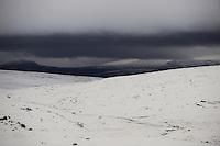 forollhogna national park , norway, september