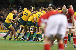 © Licensed to London News Pictures. 16/06/2012. Etihad Stadium, Melbourne Australia. Australian players celebrate after winning the match after the siren as a Welsh players shows disapointment during the 2nd Rugby Test between Australia Wallabies Vs Wales . Photo credit : Asanka Brendon Ratnayake/LNP