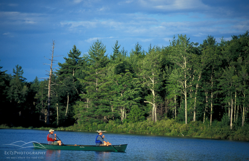 Freedom, NH.Paddling a canoe in Trout Pond in New Hampshire's Lakes Region.  Part of future town forest.