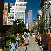 The High Line is a public park built on a historic freight rail line elevated above the streets on Manhattan's West Side. It runs from Gansevoort Street in the Meatpacking District to West 34th Street, between 10th and 12th Avenues.