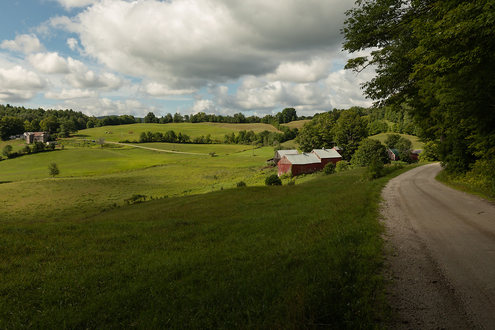 Summertime at Jenne Farm.