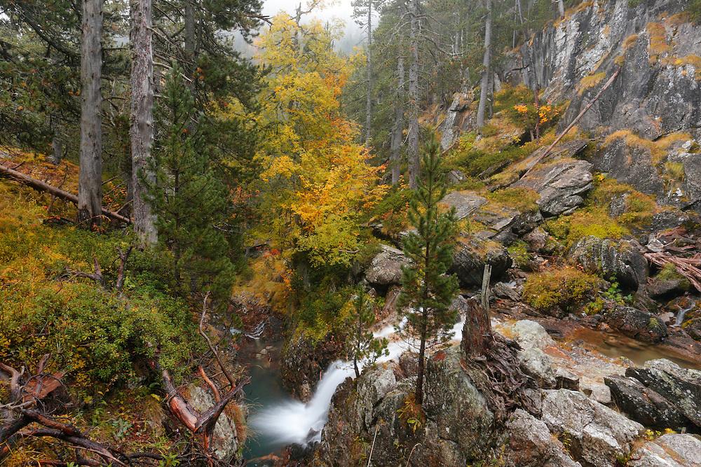 Pequeña cascada de l'Aigüeta de Batisielles, Ball d'Estós, Benasque, Huesca
