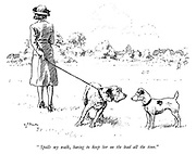 """""""Spoils my walk, having to keep her on the lead all the time."""""""